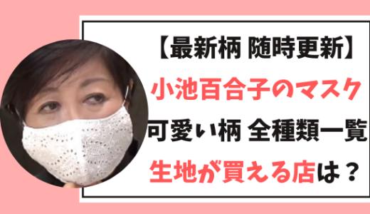 【最新】小池百合子のマスク全柄/生地が買える店まとめ!デニム/レース/ペイズリー!小顔効果も!