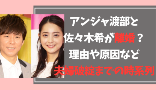 アンジャ渡部と佐々木希が離婚?理由や原因、夫婦破綻までの時系列!
